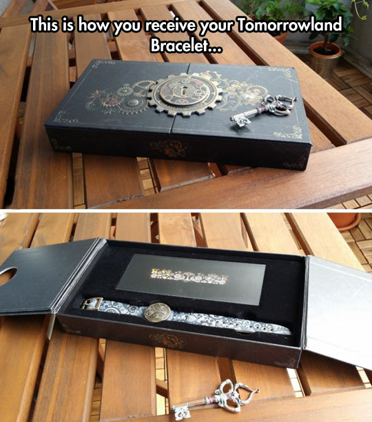 Incredible Bracelet