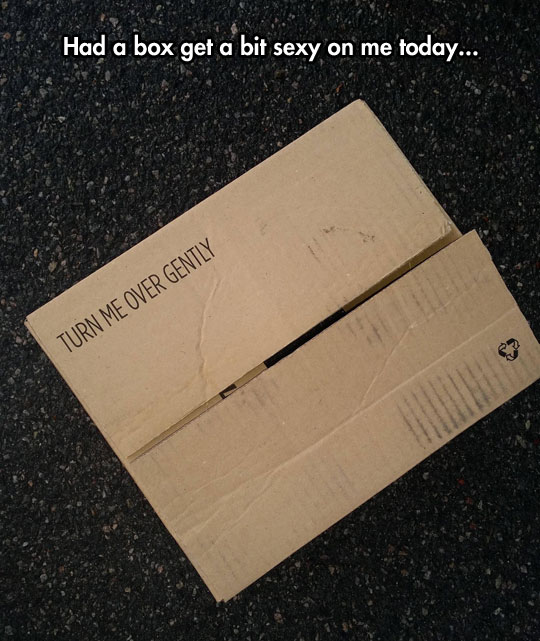 funny-box-lid-turn-over