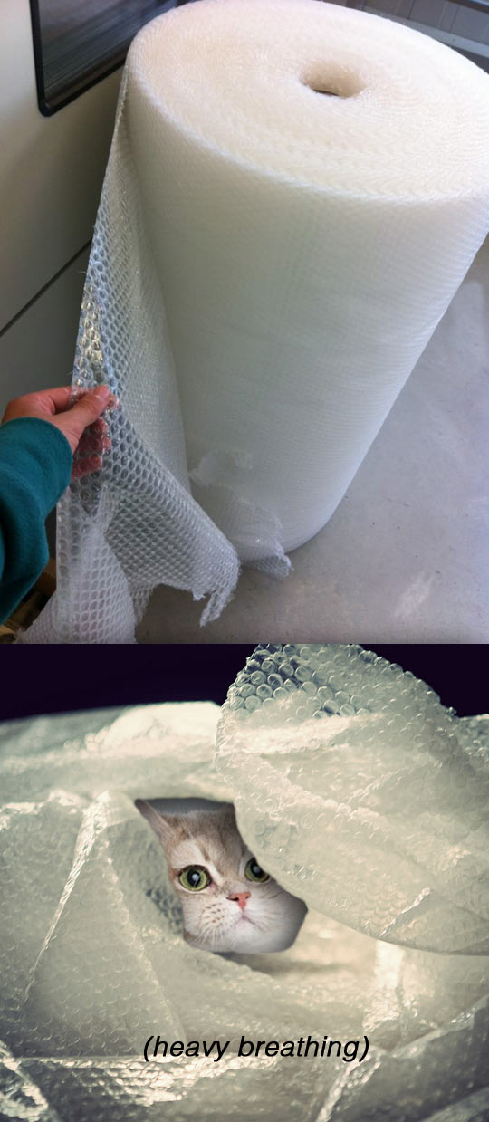 funny-bubble-wrap-big-roll