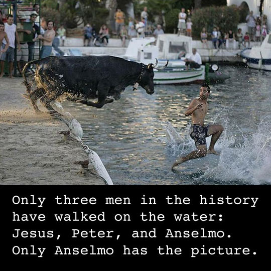 Only Anselmo Has The Picture