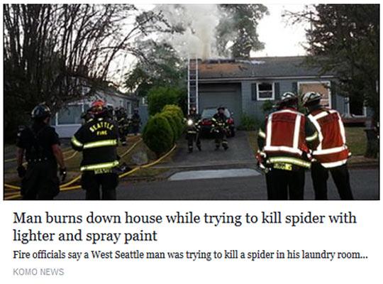 funny-burn-house-trying-spider-lighter