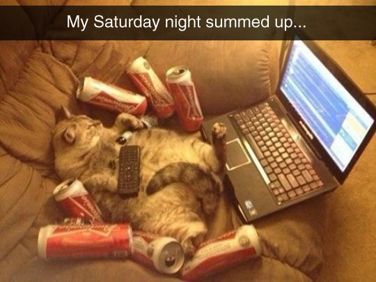 My Plans For Saturday