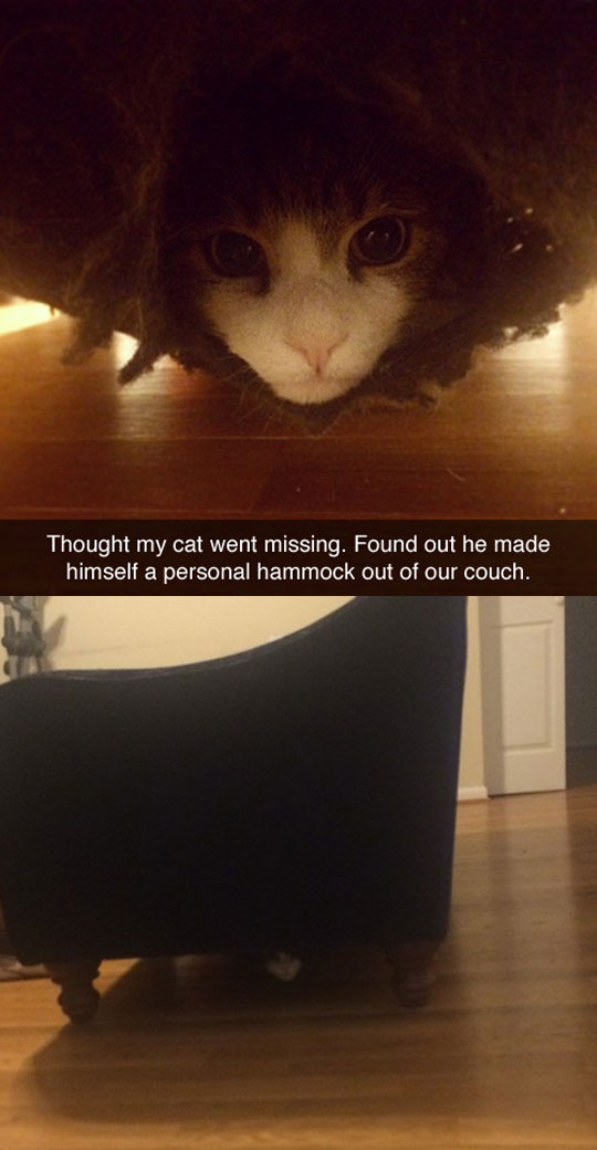 Personal Hammock