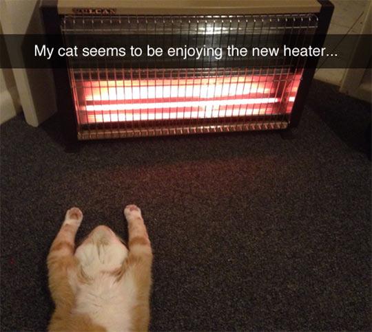 All Praise The Glowing Warmth