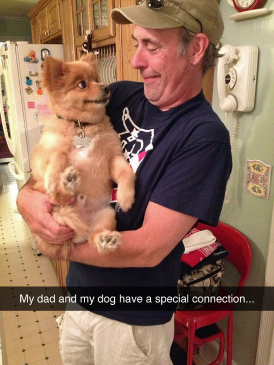 funny-dog-dad-carrying-smile-kitchen