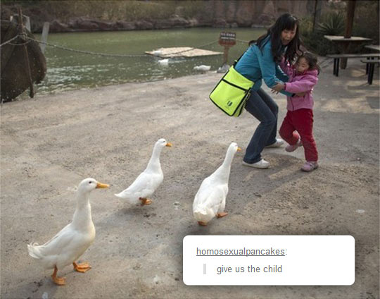 funny-duck-mother-kid-daughter-lake