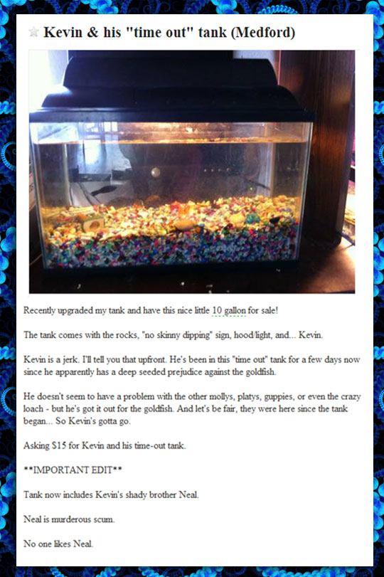 The Mean Fish Tank