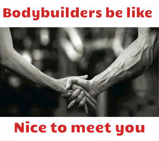 Meeting A Bodybuilder