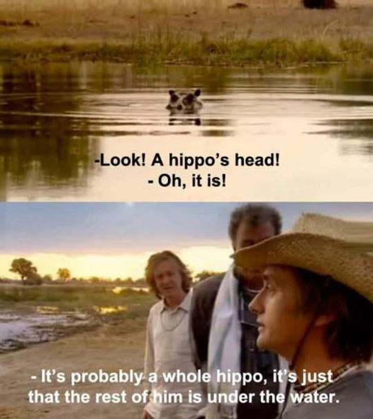 funny-hippo-head-water-Top-Gear