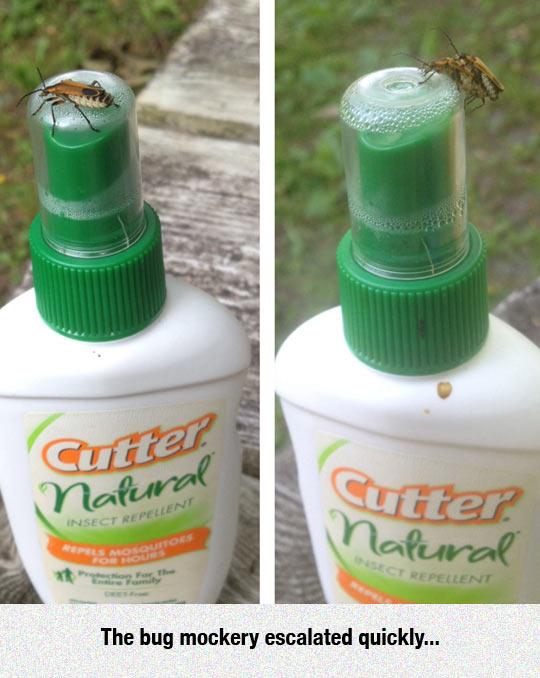 funny-insect-repellent-cap