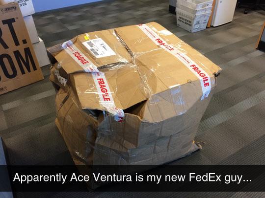 funny-mail-box-cardboard-fragile