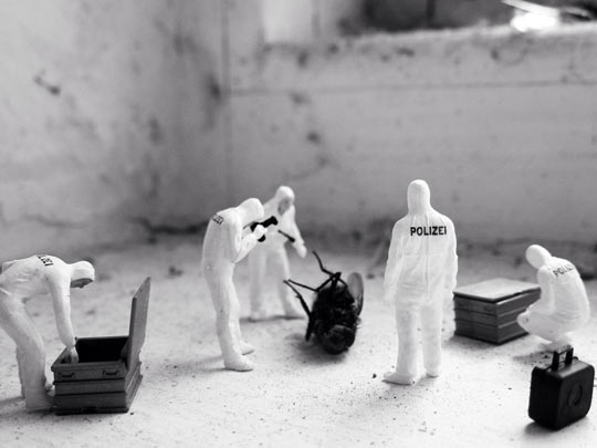 funny-police-small-crime-scene-fly