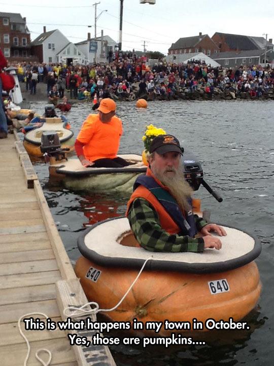funny-pumpkins-boat-river-race