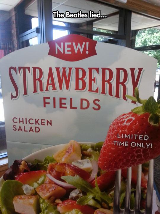 funny-strawberry-fields-chicken-salad