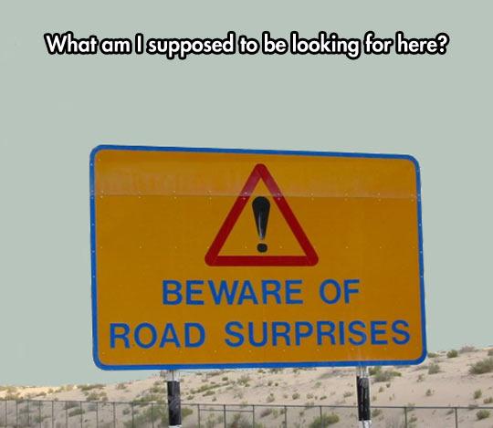 Road Surprises