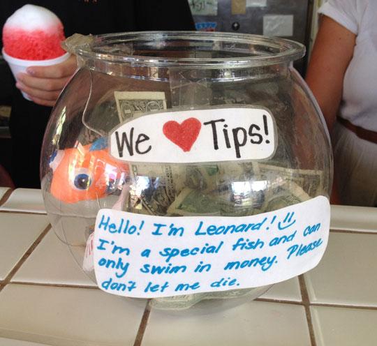 Tip Jar In Hawaii width=