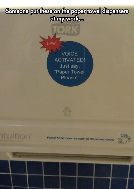 Paper Towel, Please
