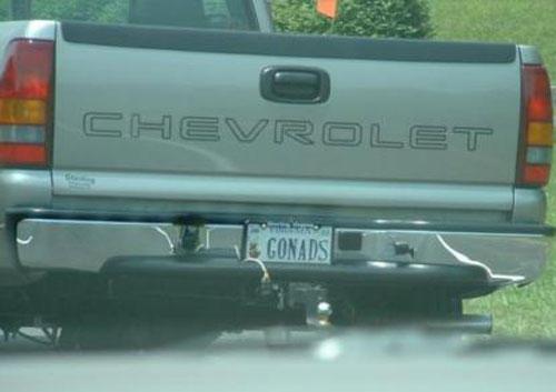 license_plates_13