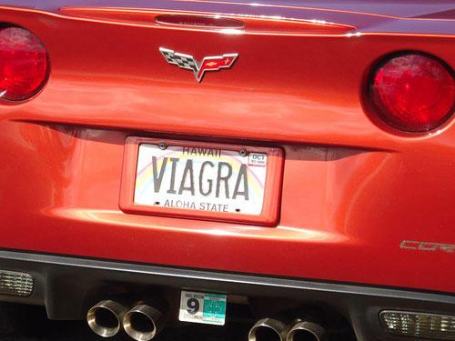 license_plates_24