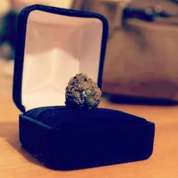 marriage_proposals_11