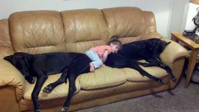 22 Little Kids And Their Big Dogs 13