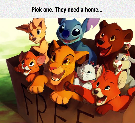 cool-Disney-animals-pets-box