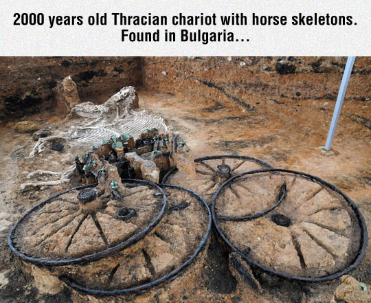 Incredible Archaeological Discovery