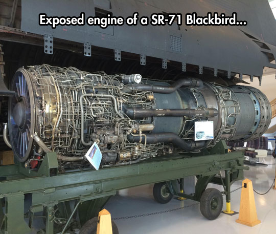 cool-blackbird-plane-engine-exposed