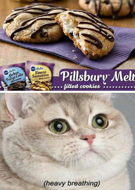 cool-cookies-Pillsbury-cat-breathing