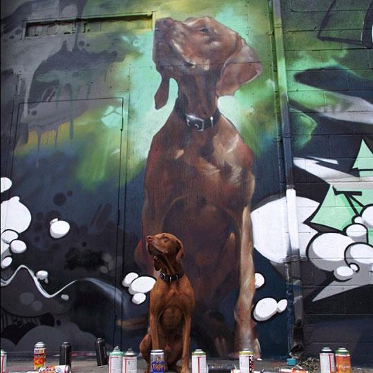 Amazing Dog Graffiti