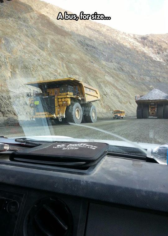 cool-dump-truck-bus-scale
