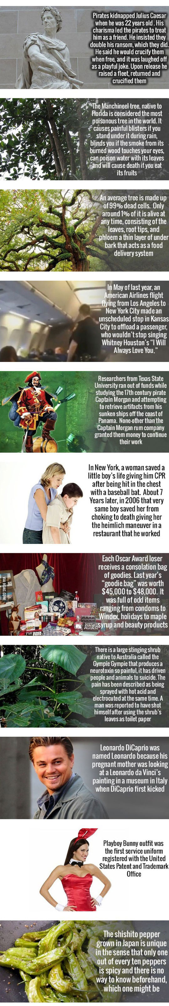 cool-history-facts-WWII-CPR-life