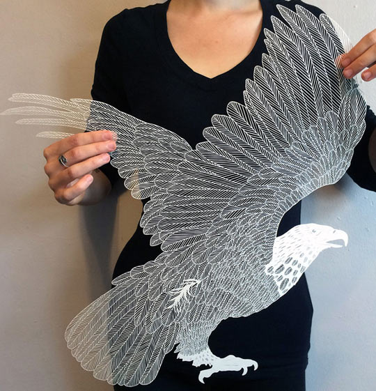 Incredible Paper Cut