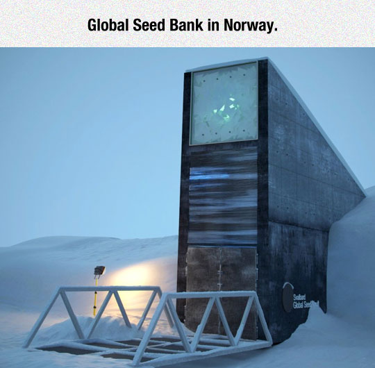 Global Seed Bank In Norway