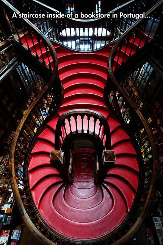cool-staircase-inside-bookstore-Portugal