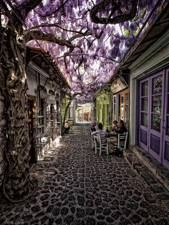 cool-street-nice-place-Cafe