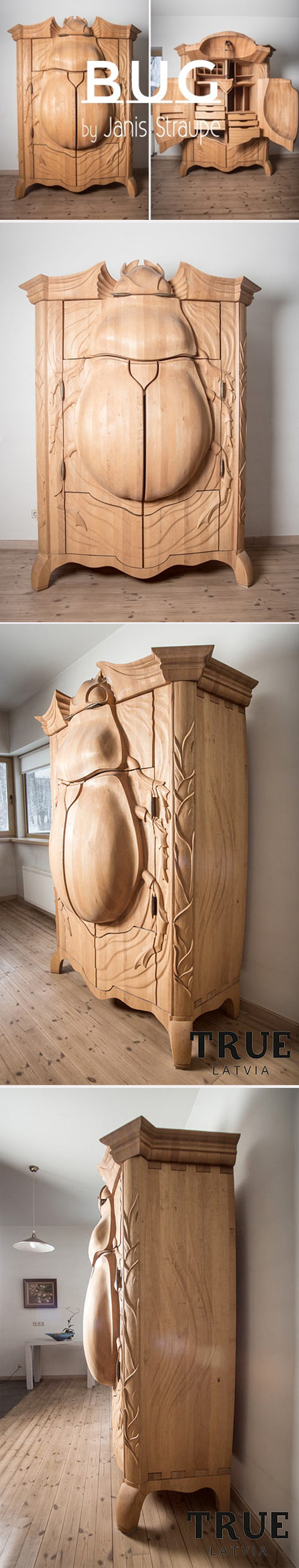 cool-wood-beetle-cabinet-carved