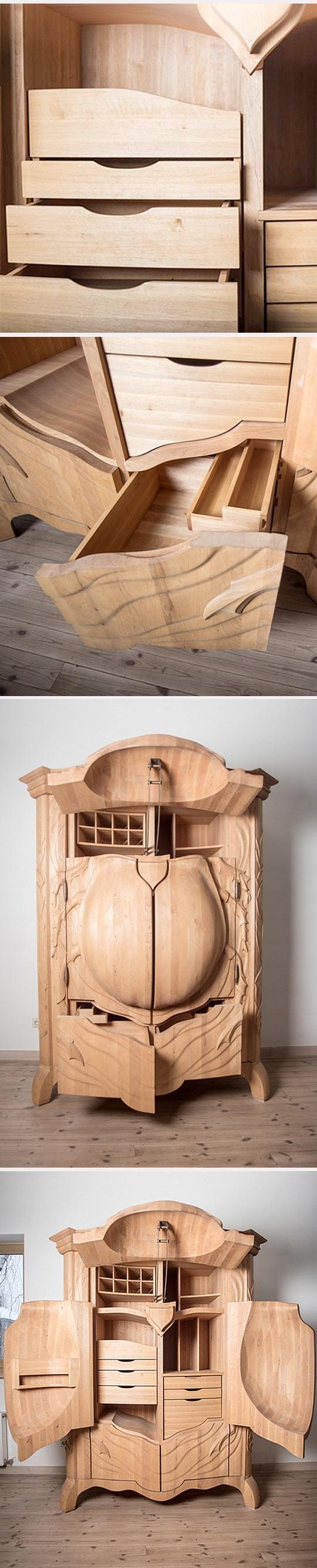 cool-wood-beetle-cabinet-inside-closet