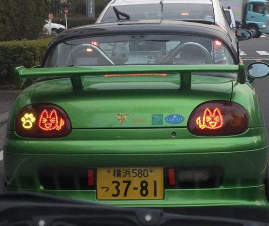 Japanese Tail Light