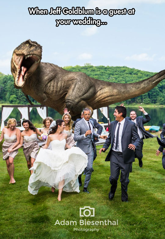 funny-Jeff-Goldblum-wedding-dinosaur