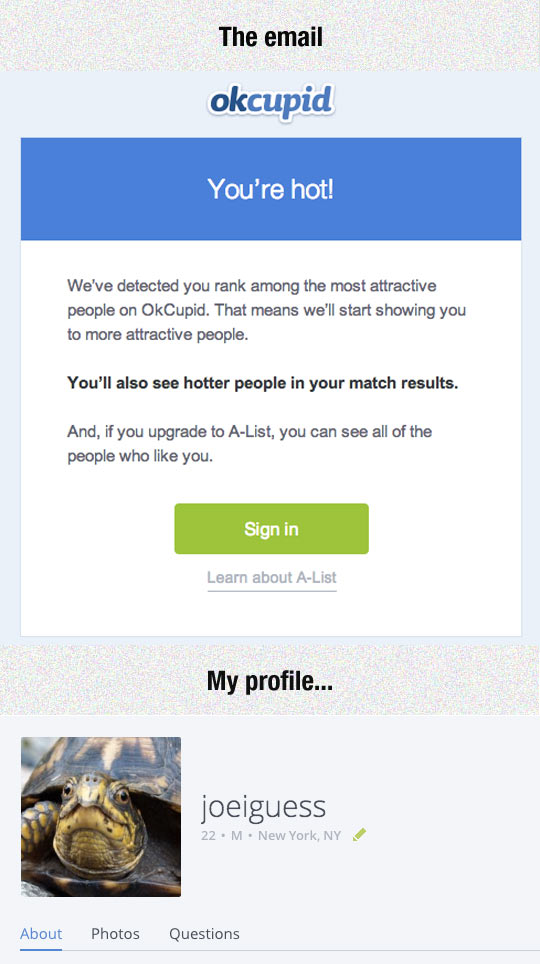 OKCupid Has Really Low Standards