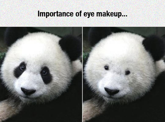 Why Eye Make Up Is Important