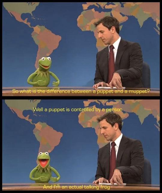 funny-Seth-Myers-Kermit-SNL