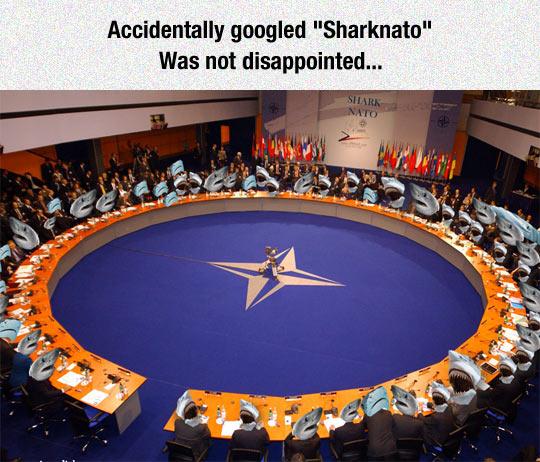funny-Sharknado-movie-convention-sharks