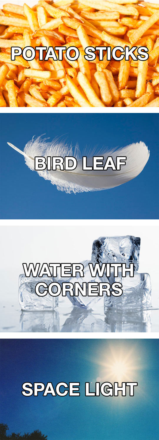 funny-alternate-names-objects-fries-leaf