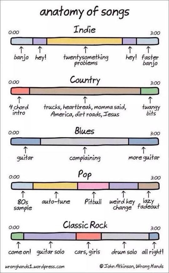 funny-anatomy-songs-music-bar