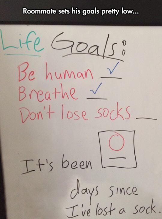 Pretty Low Life Goals