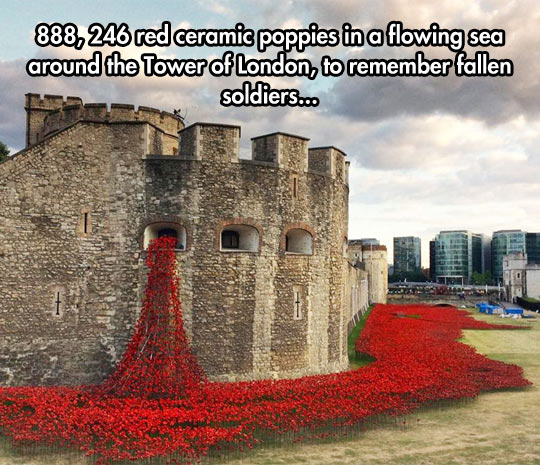 funny-castle-flowers-tribute-tower