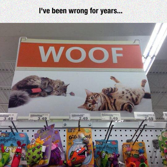 funny-cats-store-sign-toys
