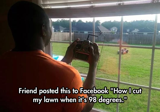 funny grass cutting